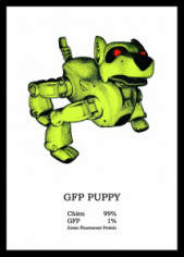 GFP Puppy (2006), France Cadet